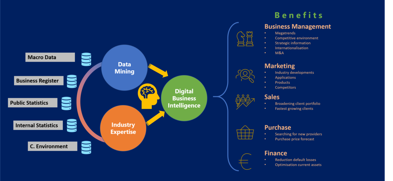Digital Business Intelligence 3